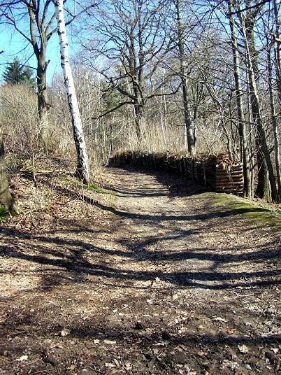 Ehemalige Winterrodelbahn in Einsiedel