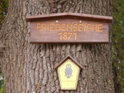 Hinweisschild an der Friedenseiche 1871