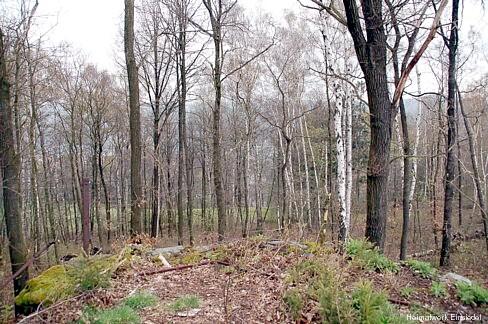 Körnerhöhe Einsiedel 2008