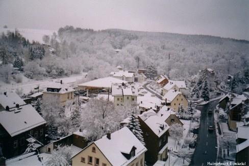 Eibischbusch Januar 2005