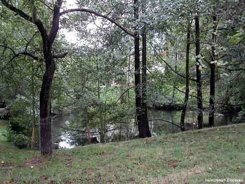 Teich des ehemaligen Naturbades Einsiedel 2004